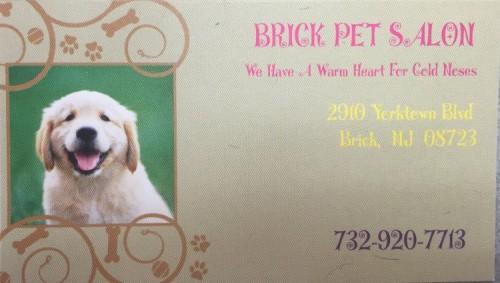 brick pet salon puppy mill awareness day