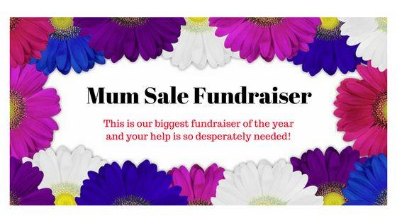 Mum Fall Fundraiser