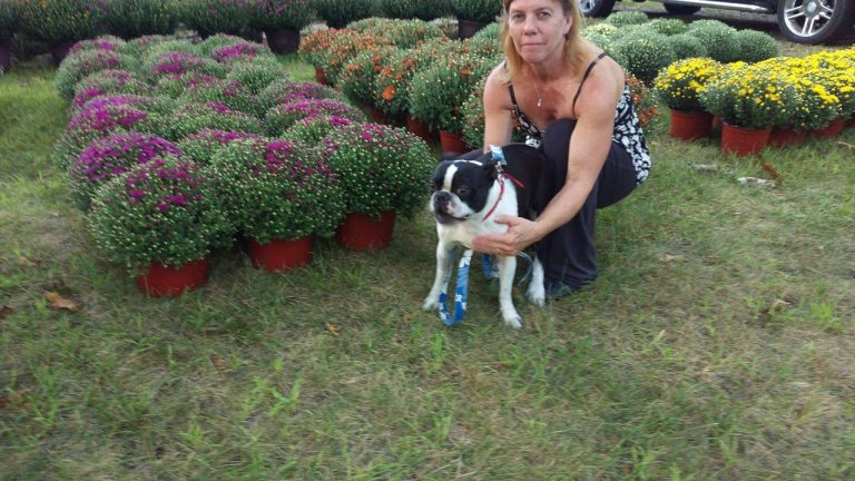 Donate to Blake The Puppy Mill Dogs Memory Blake and Kathy